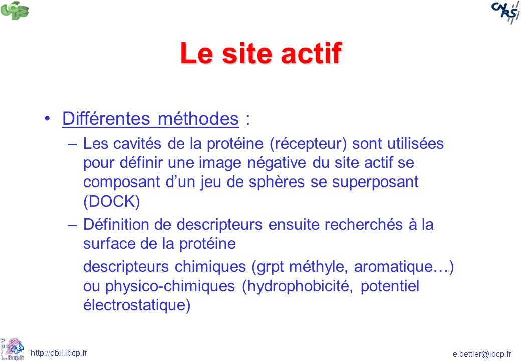 e.bettler@ibcp.fr http://pbil.ibcp.fr Le site actif Différentes méthodes : –Les cavités de la protéine (récepteur) sont utilisées pour définir une image négative du site actif se composant dun jeu de sphères se superposant (DOCK) –Définition de descripteurs ensuite recherchés à la surface de la protéine descripteurs chimiques (grpt méthyle, aromatique…) ou physico-chimiques (hydrophobicité, potentiel électrostatique)