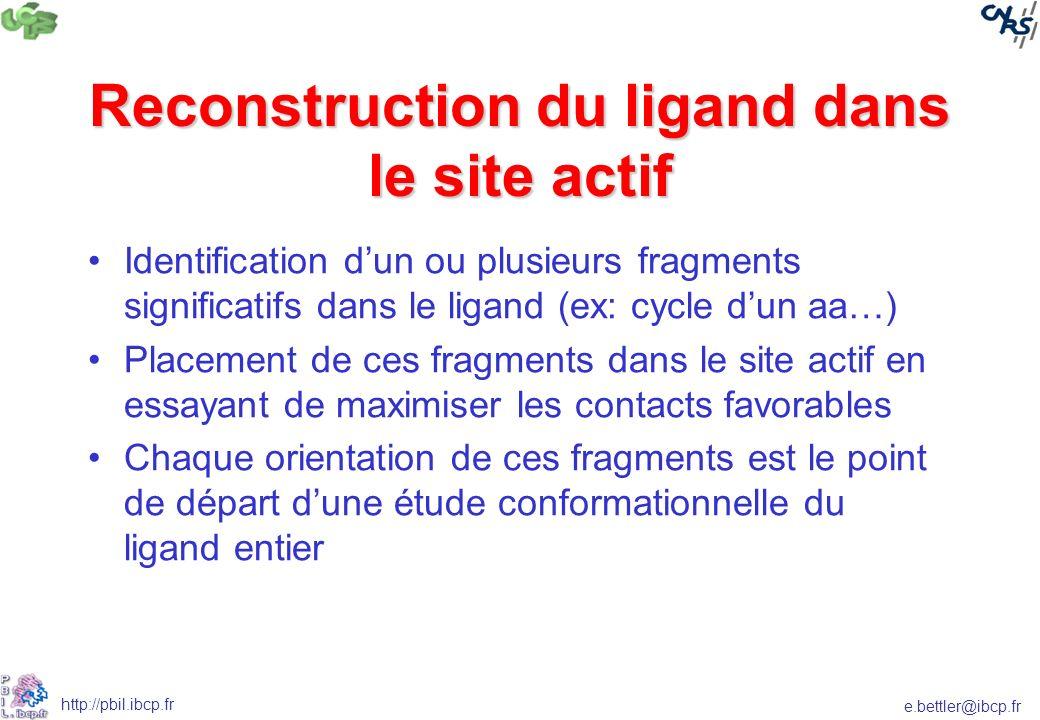 e.bettler@ibcp.fr http://pbil.ibcp.fr Reconstruction du ligand dans le site actif Identification dun ou plusieurs fragments significatifs dans le liga