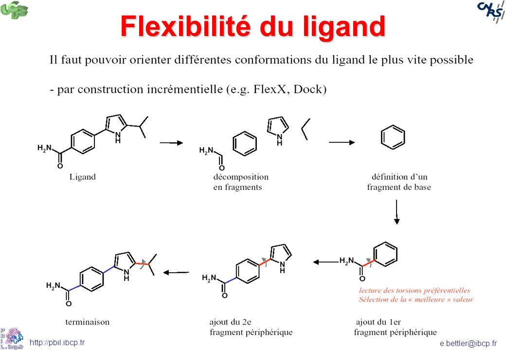 e.bettler@ibcp.fr http://pbil.ibcp.fr Flexibilité du ligand