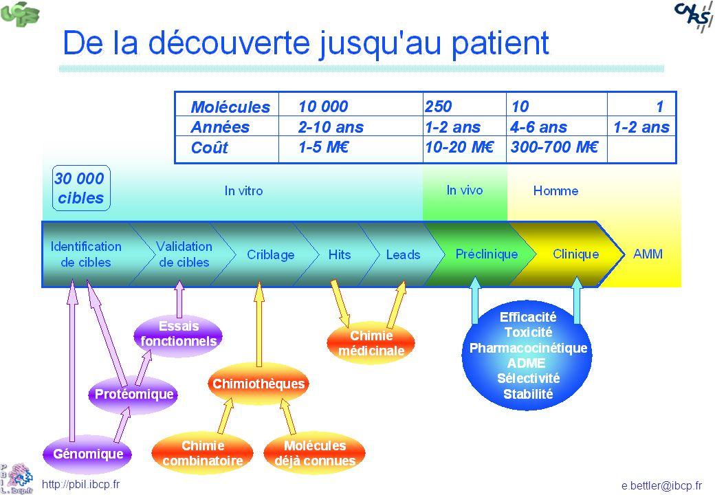 e.bettler@ibcp.fr http://pbil.ibcp.fr Ligand rigide La protéine et le ligand sont fixes.