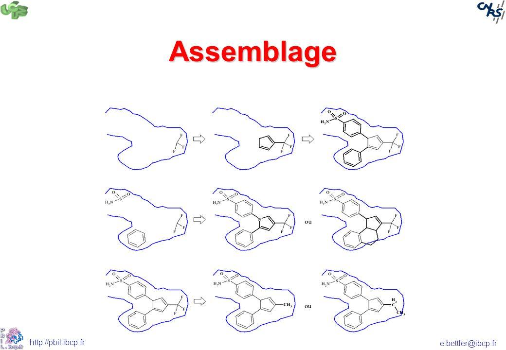 e.bettler@ibcp.fr http://pbil.ibcp.fr Assemblage