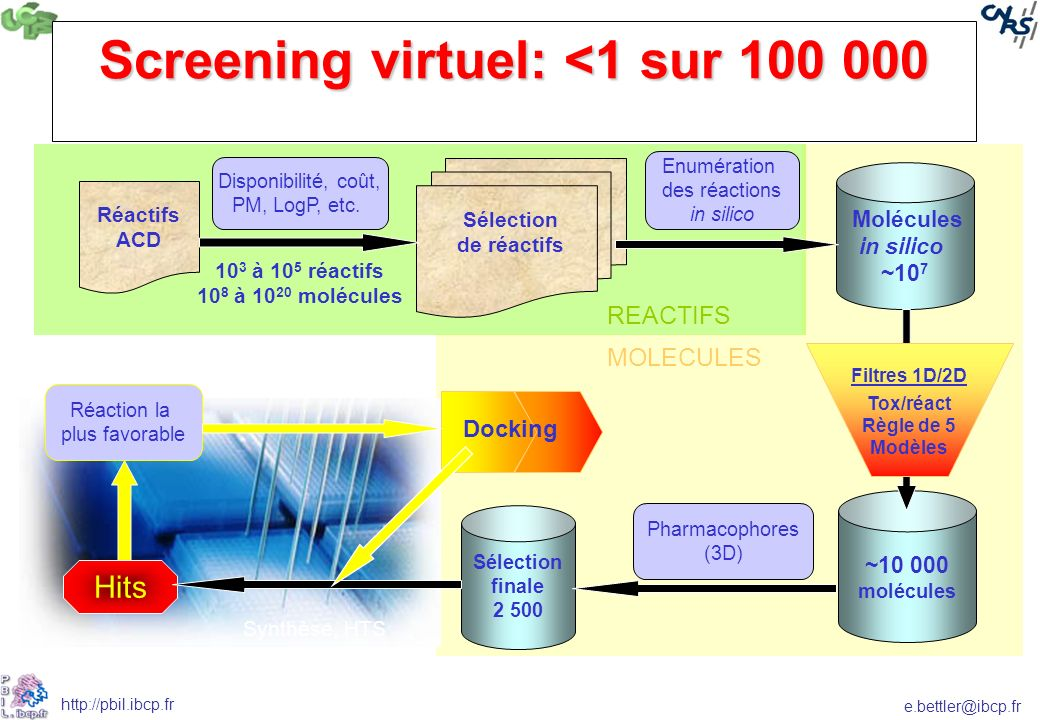 e.bettler@ibcp.fr http://pbil.ibcp.fr Screening virtuel: <1 sur 100 000 Molécules in silico ~10 7 ~10 000 molécules Filtres 1D/2D Tox/réact Règle de 5