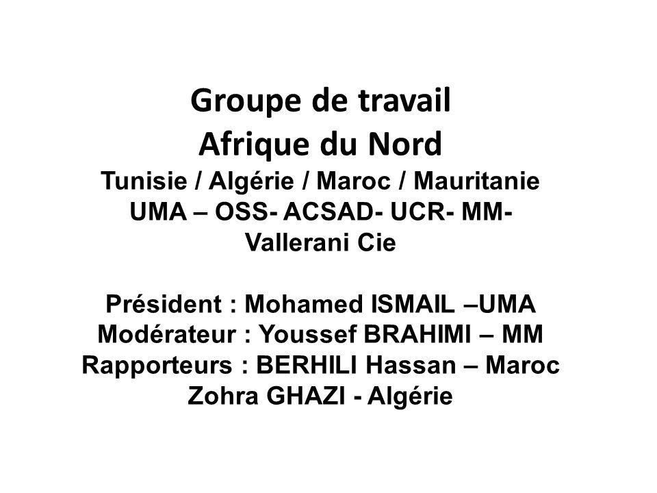 Groupe de travail Afrique du Nord Tunisie / Algérie / Maroc / Mauritanie UMA – OSS- ACSAD- UCR- MM- Vallerani Cie Président : Mohamed ISMAIL –UMA Modérateur : Youssef BRAHIMI – MM Rapporteurs : BERHILI Hassan – Maroc Zohra GHAZI - Algérie