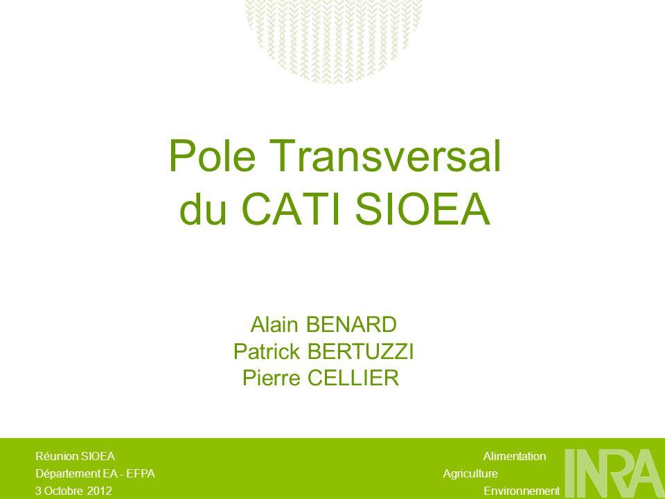 Alimentation Agriculture Environnement Réunion SIOEA Département EA - EFPA 3 Octobre 2012 Pole Transversal du CATI SIOEA Alain BENARD Patrick BERTUZZI Pierre CELLIER