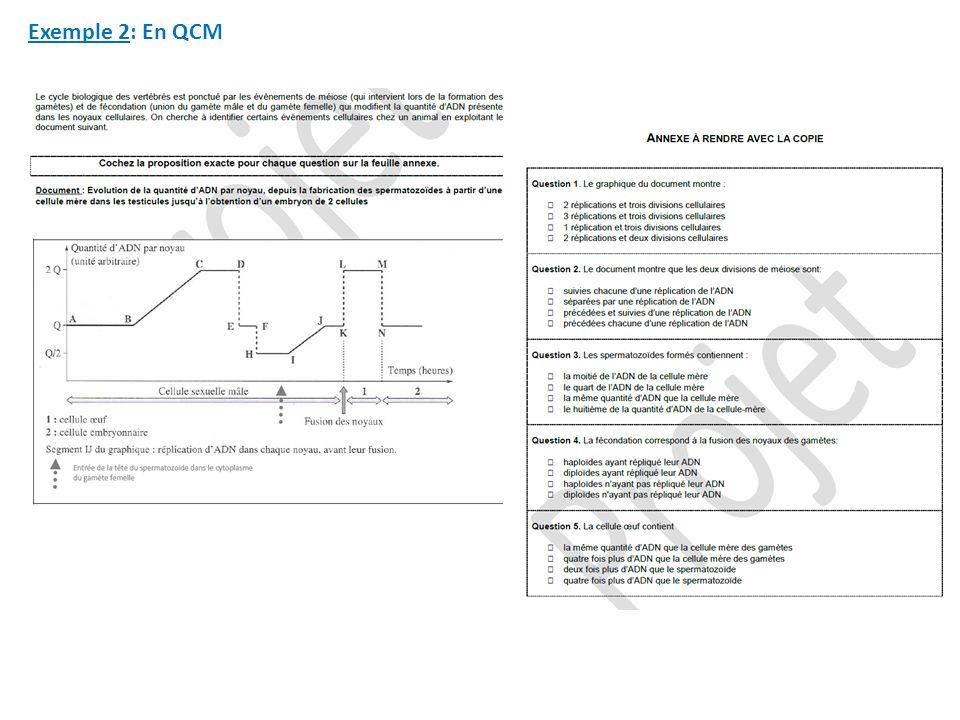 Exemple 2: En QCM
