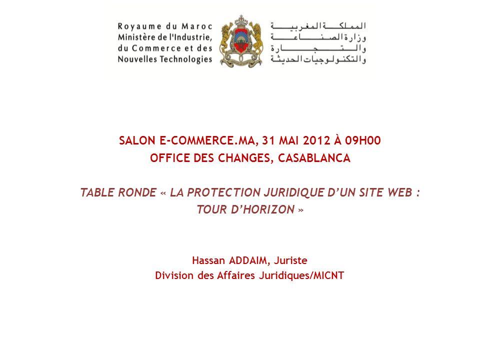 1) Mesures, réparations et sanctions en cas dinfraction au régime des droits de protection dun site web.