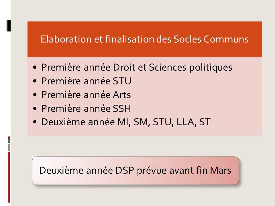 Elaboration et finalisation des Socles Communs Première année Droit et Sciences politiques Première année STU Première année Arts Première année SSH D