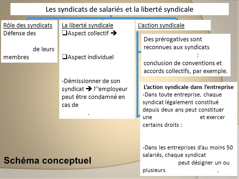 Schéma conceptuel Rôle des syndicats Défense des intérêts matériels et moraux de leurs membres Les syndicats de salariés et la liberté syndicale La li