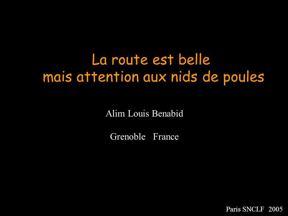 Alim Louis Benabid Grenoble France Paris SNCLF 2005 La route est belle mais attention aux nids de poules