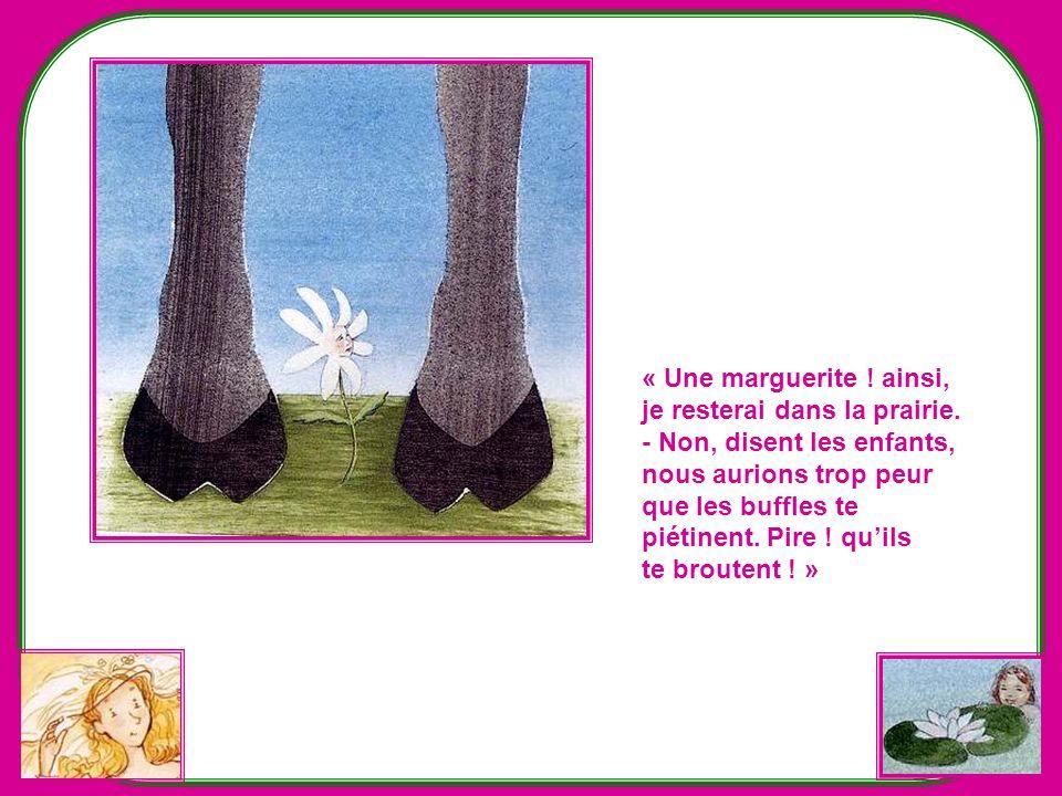 Létoile hésite… Une fleur des montagnes ? Mais elle sera très loin du village et de ses amis… Et les enfants sont soulagés quelle ne fasse pas ce choi
