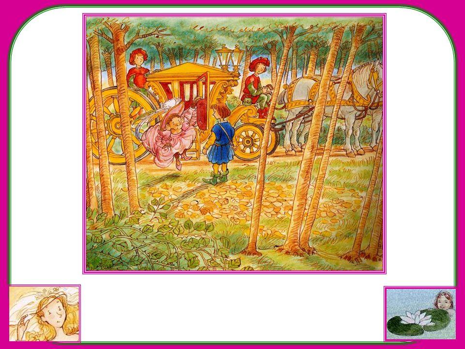 La porte du carrosse souvre. Et sais-tu qui en descend ? Une guenon ! Une princesse habillée en guenon ! Surpris, le prince bafouille : « Mmmm… ma… Ma