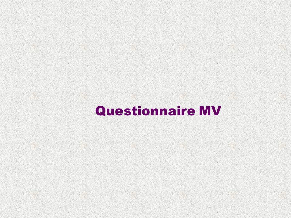 Questionnaire MV