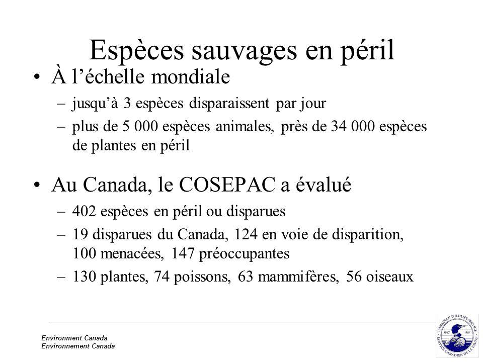 Environment Canada Environnement Canada Espèces sauvages en péril À léchelle mondiale –jusquà 3 espèces disparaissent par jour –plus de 5 000 espèces