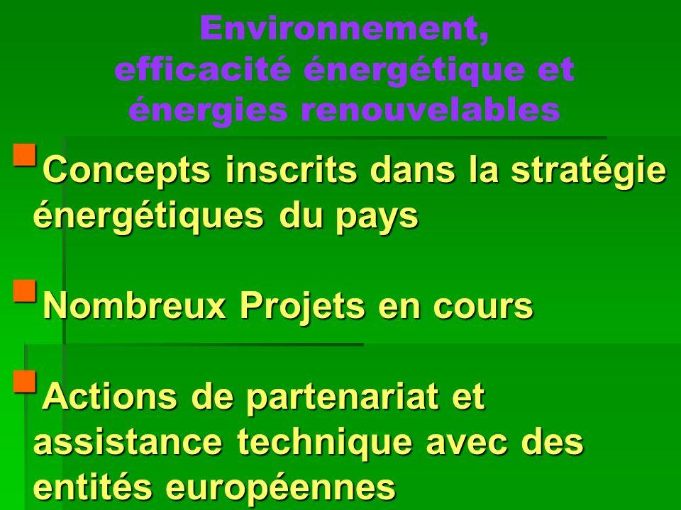 Environnement, efficacité énergétique et énergies renouvelables Concepts inscrits dans la stratégie énergétiques du pays Concepts inscrits dans la str