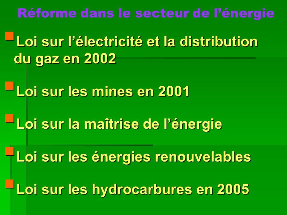 Réforme dans le secteur de lénergie Loi sur lélectricité et la distribution du gaz en 2002 Loi sur lélectricité et la distribution du gaz en 2002 Loi