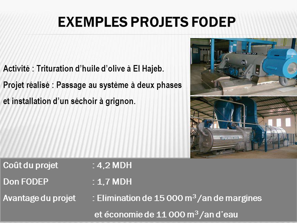 Activité : Trituration dhuile dolive à El Hajeb. Projet réalisé : Passage au système à deux phases et installation dun séchoir à grignon. EXEMPLES PRO