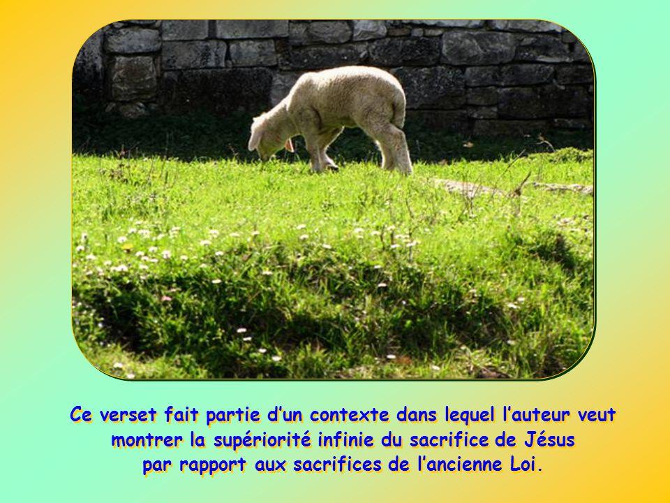 Lauteur veut souligner ainsi lamour avec lequel le Fils de Dieu sest fait homme pour accomplir lœuvre de la rédemption dans lobéissance à la volonté d