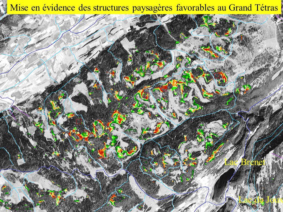 Mise en évidence des structures paysagères favorables au Grand Tétras Lac Brenet Lac de Joux