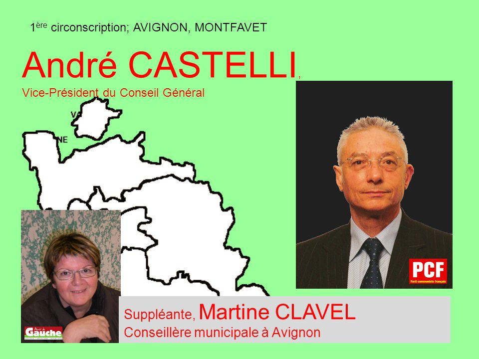 1 ère circonscription; AVIGNON, MONTFAVET André CASTELLI, Vice-Président du Conseil Général Suppléante, Martine CLAVEL Conseillère municipale à Avignon