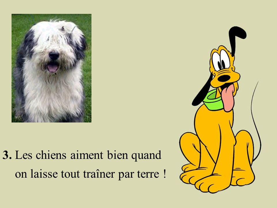 2. Les chiens ne font pas attention quand on les appelle par le nom d'un autre chien !