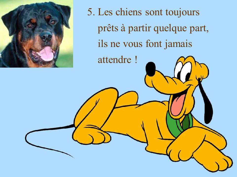 4. Les parents du chien ne viennent jamais vous rendre visite !