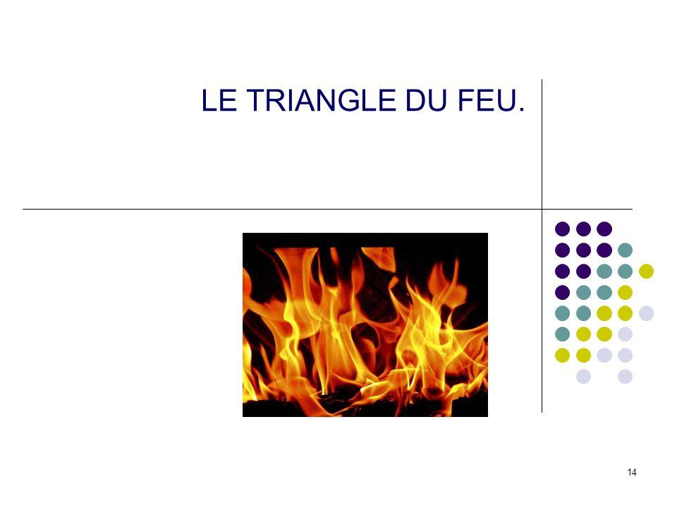 14 LE TRIANGLE DU FEU.