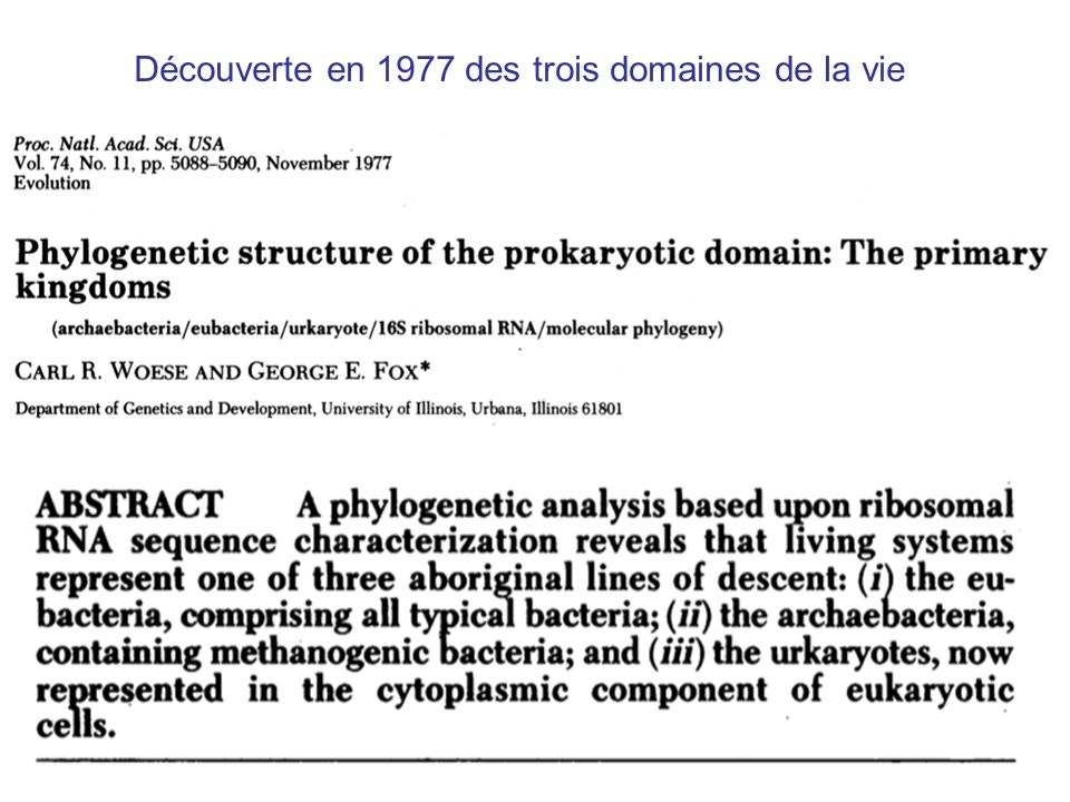 14 Tom Cavalier-Smith (1987) Nature 326:332 It is a widespread fallacy that mitochondria are found in all eukaryotic cells.