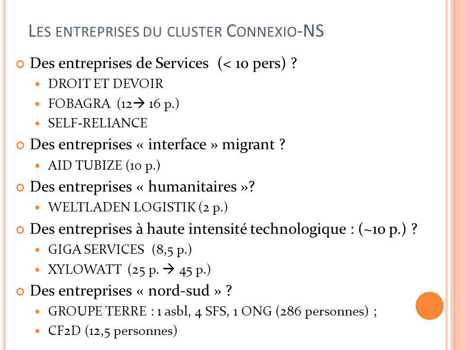L ES ENTREPRISES DU CLUSTER C ONNEXIO -NS Des entreprises de Services (< 10 pers) .