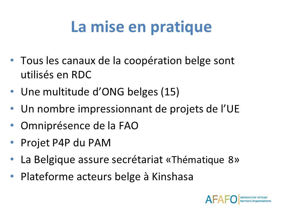 La mise en pratique Tous les canaux de la coopération belge sont utilisés en RDC Une multitude dONG belges (15) Un nombre impressionnant de projets de lUE Omniprésence de la FAO Projet P4P du PAM La Belgique assure secrétariat « Thématique 8 » Plateforme acteurs belge à Kinshasa