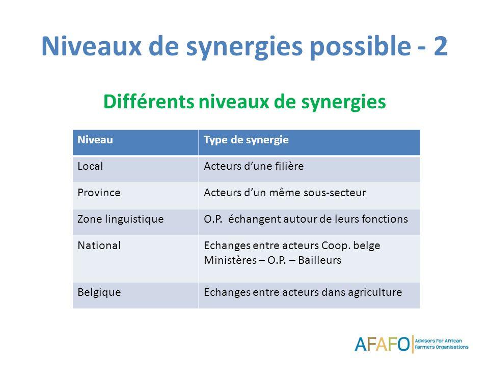 Niveaux de synergies possible - 2 Différents niveaux de synergies NiveauType de synergie LocalActeurs dune filière ProvinceActeurs dun même sous-secteur Zone linguistiqueO.P.