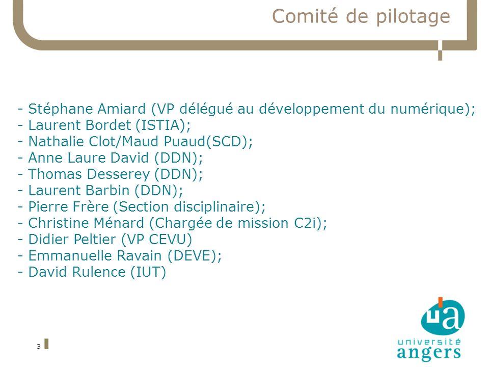 Comité de pilotage 3 - Stéphane Amiard (VP délégué au développement du numérique); - Laurent Bordet (ISTIA); - Nathalie Clot/Maud Puaud(SCD); - Anne Laure David (DDN); - Thomas Desserey (DDN); - Laurent Barbin (DDN); - Pierre Frère (Section disciplinaire); - Christine Ménard (Chargée de mission C2i); - Didier Peltier (VP CEVU) - Emmanuelle Ravain (DEVE); - David Rulence (IUT)