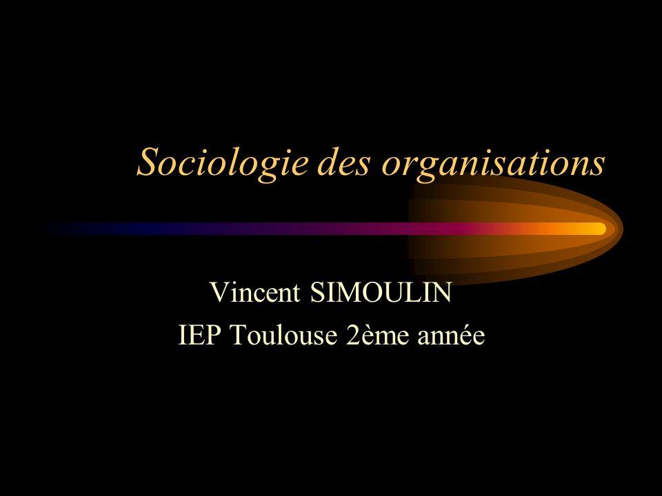Sociologie des organisations Vincent SIMOULIN IEP Toulouse 2ème année