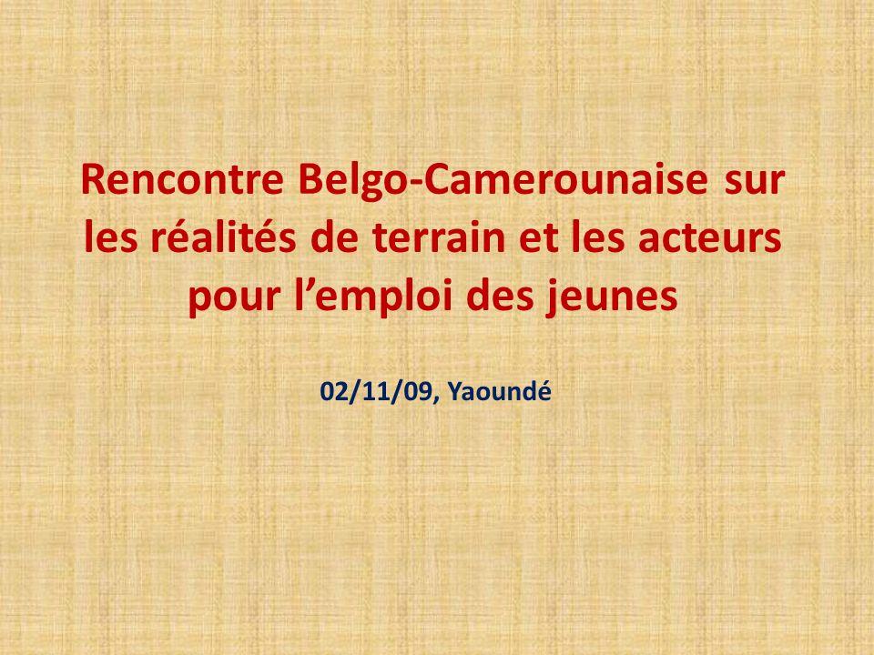 Rencontre Belgo-Camerounaise sur les réalités de terrain et les acteurs pour lemploi des jeunes 02/11/09, Yaoundé