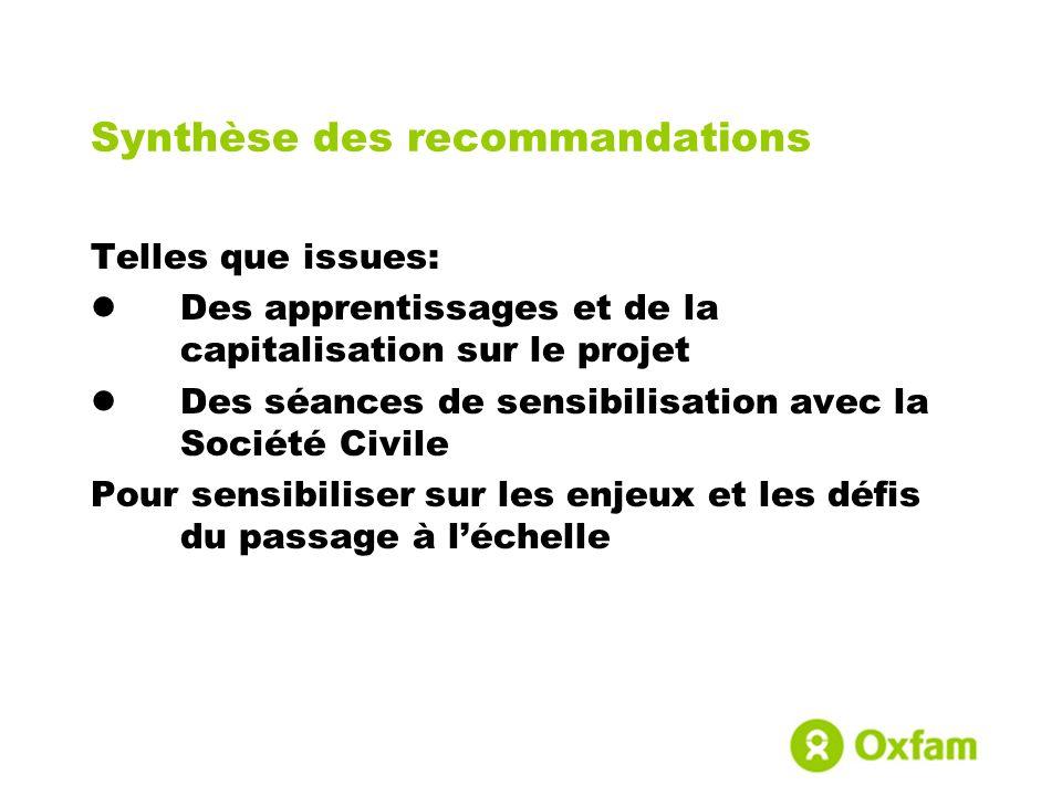 Synthèse des recommandations Telles que issues: Des apprentissages et de la capitalisation sur le projet Des séances de sensibilisation avec la Sociét