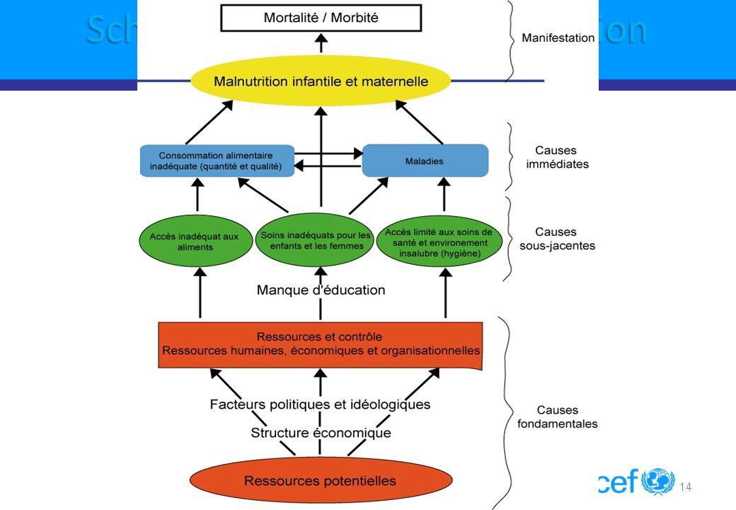 14 Schema causal de la Malnutrition