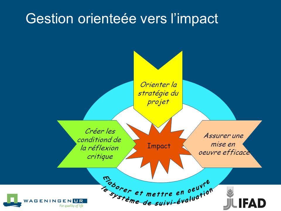 Gestion orienteée vers limpact Impact Orienter la stratégie du projet Assurer une mise en oeuvre efficace Créer les conditiond de la réflexion critiqu