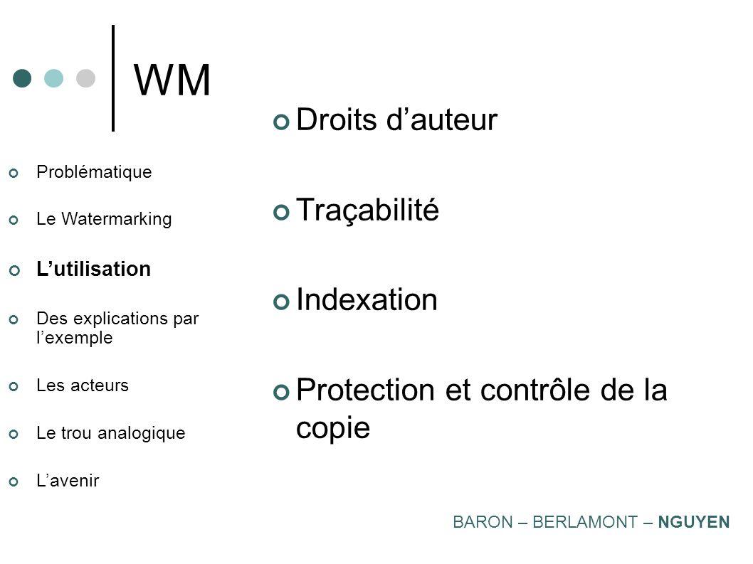 Problématique Le Watermarking Lutilisation Des explications par lexemple Les acteurs Le trou analogique Lavenir WM Synthèse BARON – BERLAMONT – NGUYEN