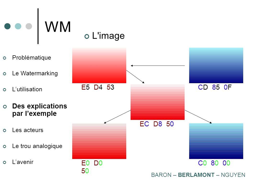 Problématique Le Watermarking Lutilisation Des explications par lexemple Les acteurs Le trou analogique Lavenir WM L'image Incruster une image dans un