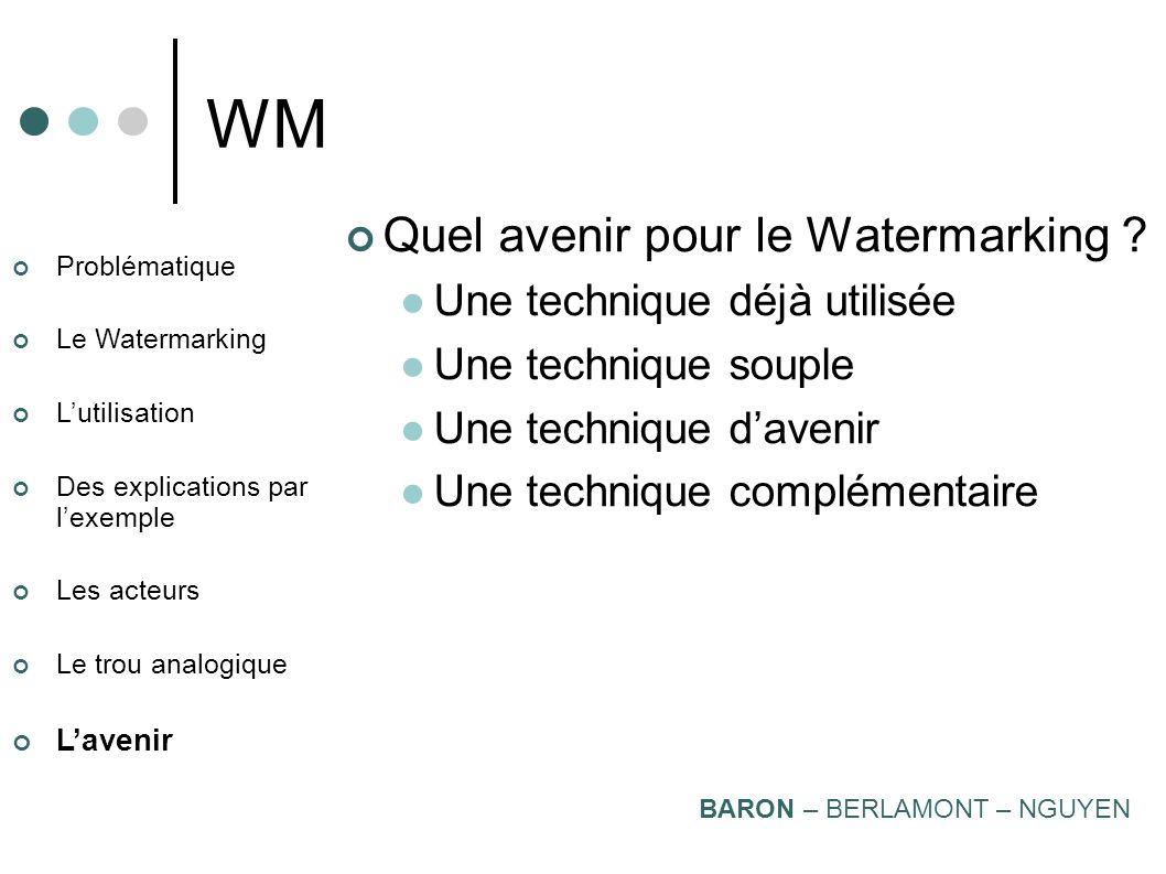 Problématique Le Watermarking Lutilisation Des explications par lexemple Les acteurs Le trou analogique Lavenir WM Home Entertainment Environment BARO