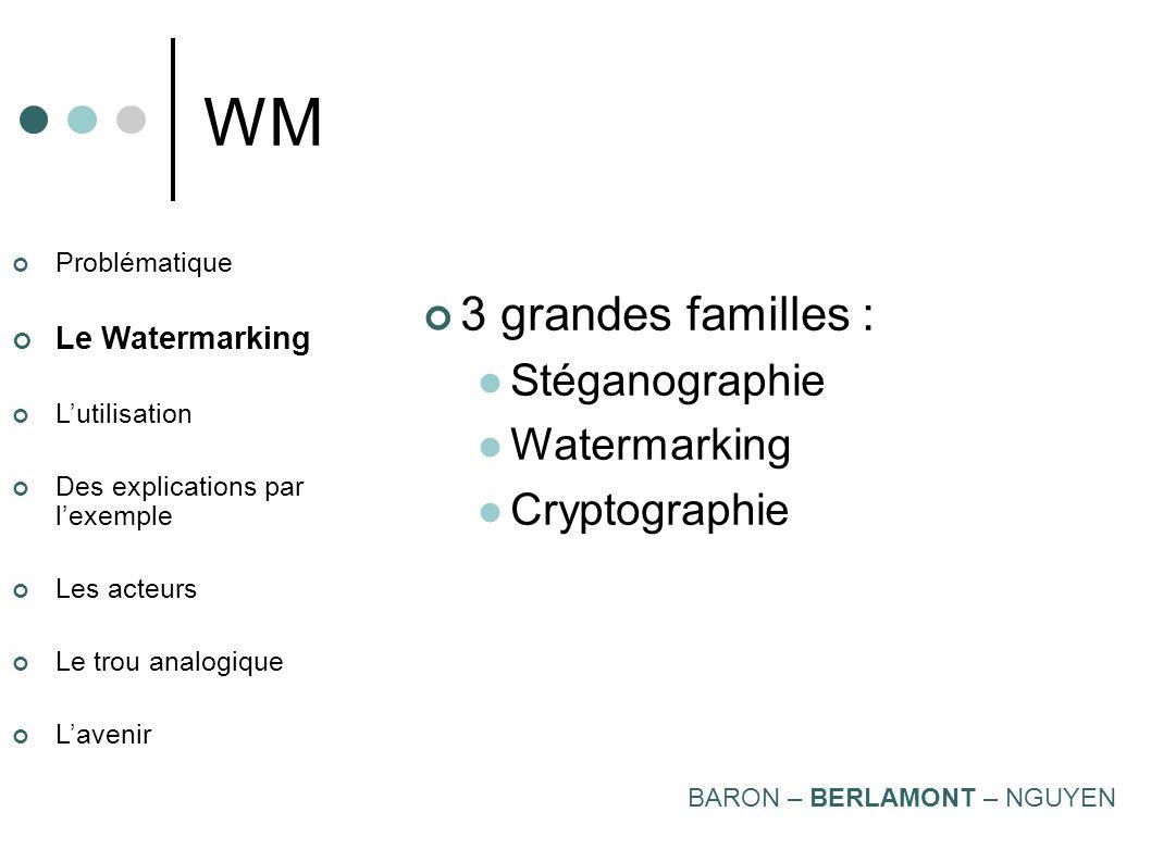 Problématique Le Watermarking Lutilisation Des explications par lexemple Les acteurs Le trou analogique Lavenir WM BARON – BERLAMONT – NGUYEN Analogiq