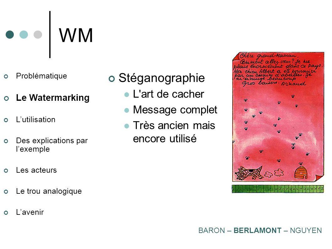 Problématique Le Watermarking Lutilisation Des explications par lexemple Les acteurs Le trou analogique Lavenir WM 3 grandes familles : Stéganographie