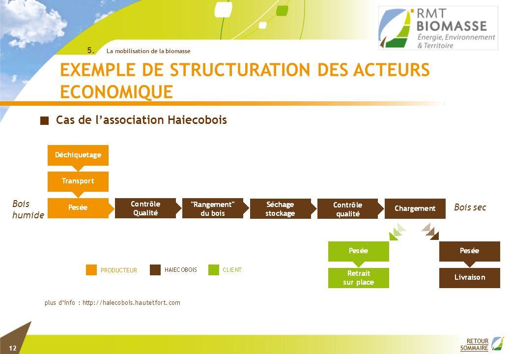 RETOUR SOMMAIRE EXEMPLE DE STRUCTURATION DES ACTEURS ECONOMIQUE plus dinfo : http://haiecobois.hautetfort.com Cas de lassociation Haiecobois Bois humi