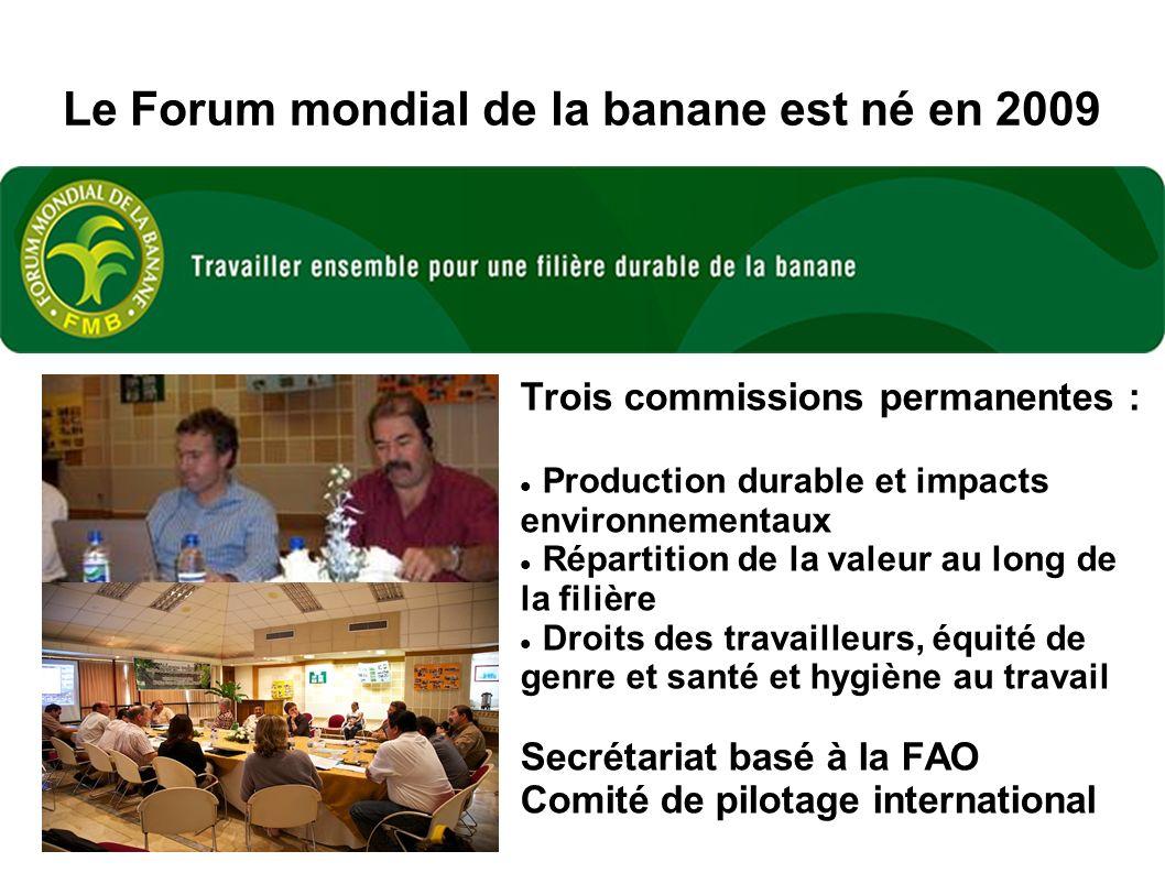 Le Forum mondial de la banane est né en 2009 Trois commissions permanentes : Production durable et impacts environnementaux Répartition de la valeur au long de la filière Droits des travailleurs, équité de genre et santé et hygiène au travail Secrétariat basé à la FAO Comité de pilotage international