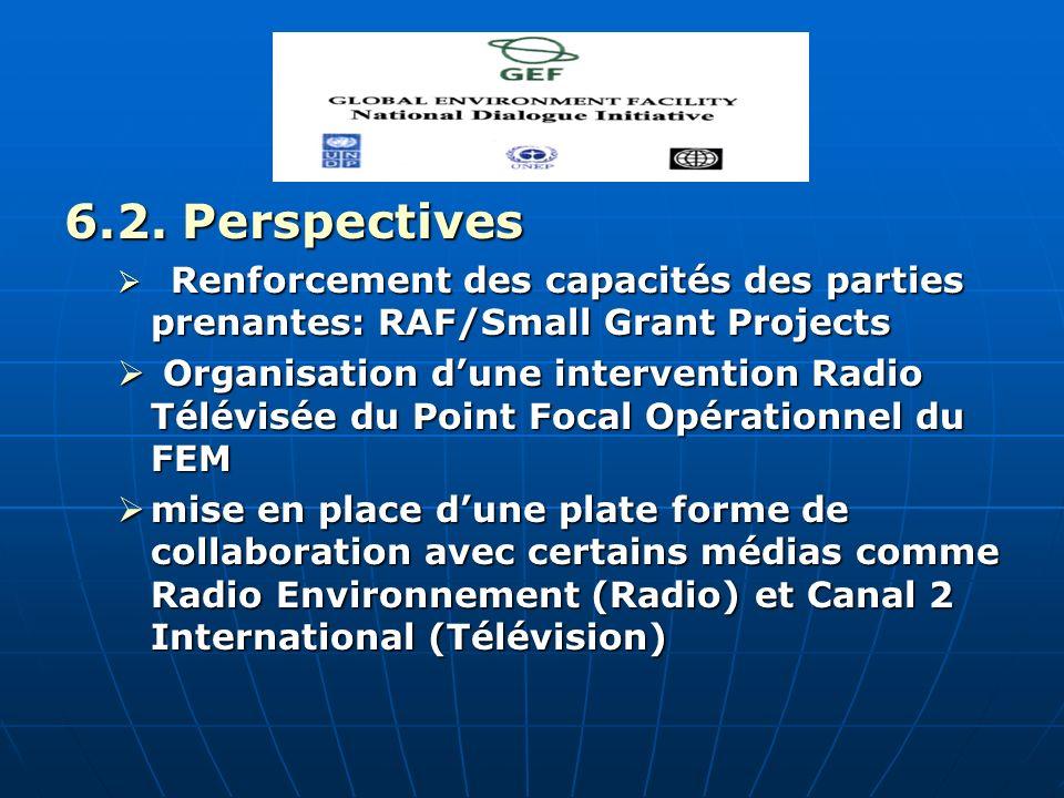 6.2. Perspectives Renforcement des capacités des parties prenantes: RAF/Small Grant Projects Renforcement des capacités des parties prenantes: RAF/Sma