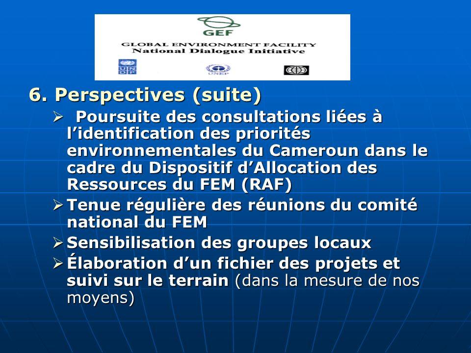 6. Perspectives (suite) Poursuite des consultations liées à lidentification des priorités environnementales du Cameroun dans le cadre du Dispositif dA