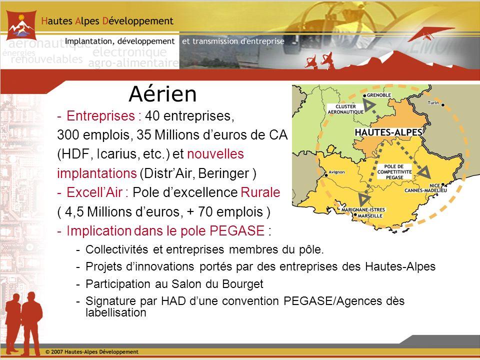 Aérien -Entreprises : 40 entreprises, 300 emplois, 35 Millions deuros de CA (HDF, Icarius, etc.) et nouvelles implantations (DistrAir, Beringer ) -ExcellAir : Pole dexcellence Rurale ( 4,5 Millions deuros, + 70 emplois ) -Implication dans le pole PEGASE : -Collectivités et entreprises membres du pôle.