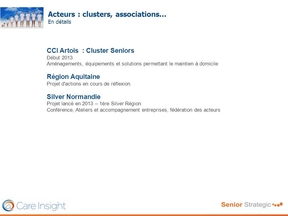 Acteurs : clusters, associations... En détails Frédéric SERRIERE CCI Artois : Cluster Seniors Début 2013 Aménagements, équipements et solutions permet