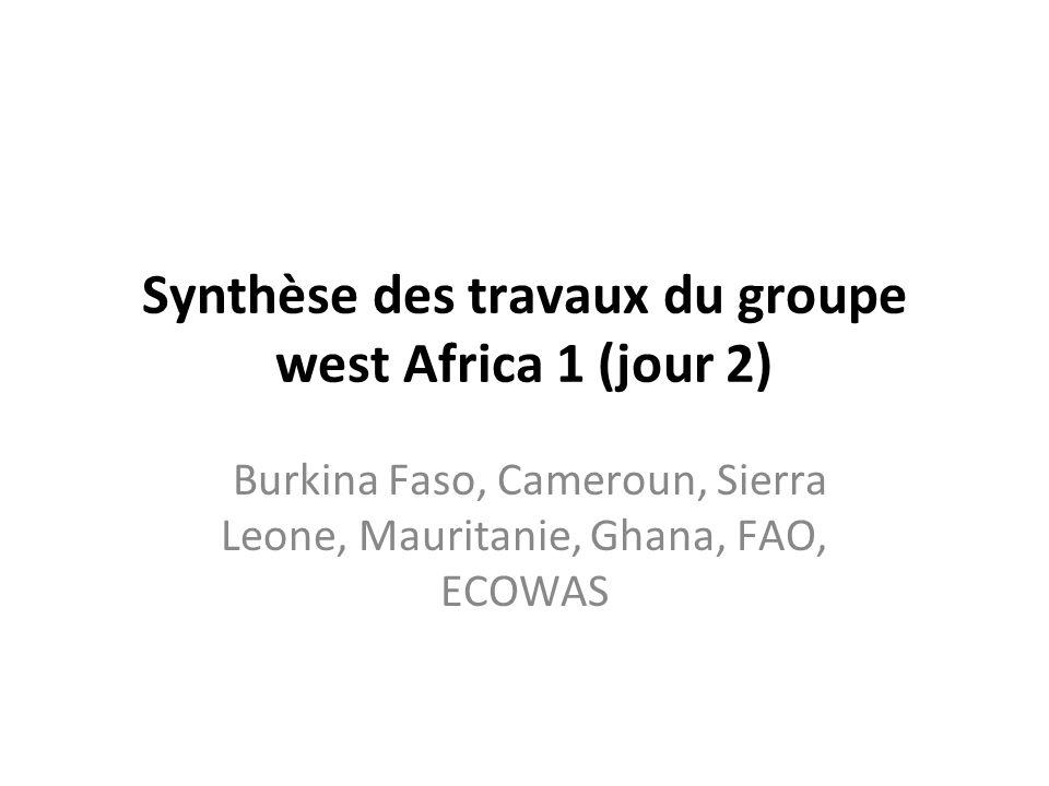 Synthèse des travaux du groupe west Africa 1 (jour 2) Burkina Faso, Cameroun, Sierra Leone, Mauritanie, Ghana, FAO, ECOWAS
