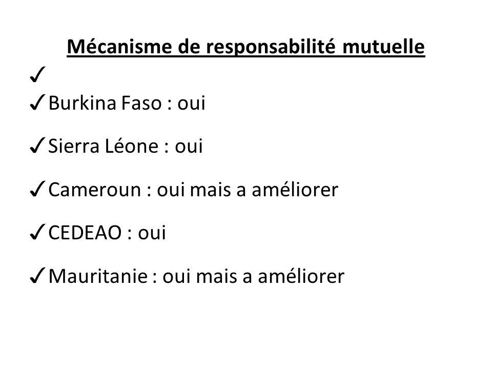 Mécanisme de responsabilité mutuelle Burkina Faso : oui Sierra Léone : oui Cameroun : oui mais a améliorer CEDEAO : oui Mauritanie : oui mais a améliorer