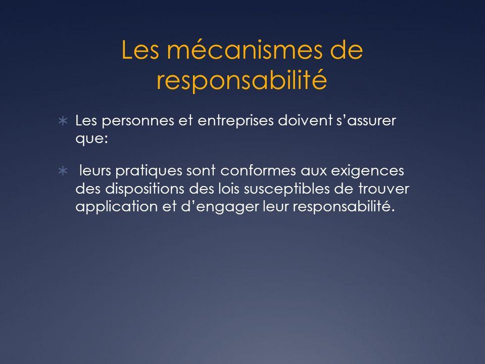 Les mécanismes de responsabilité Les personnes et entreprises doivent sassurer que: leurs pratiques sont conformes aux exigences des dispositions des lois susceptibles de trouver application et dengager leur responsabilité.